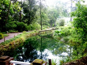 Jardin_Botanico_Gijon